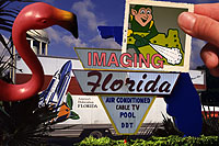 Imaging Florida