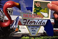 Imaging Florida